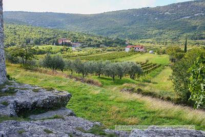 Slowenien, Blick in die Umgebung der UNESCO-Welterbe-Kirche in Hrastovlje