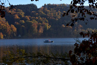 Herbst 2015 am Wallersee 16