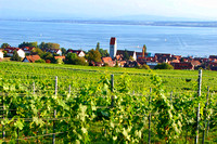 Bodensee_2009_616