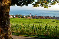 Bodensee_2009_626