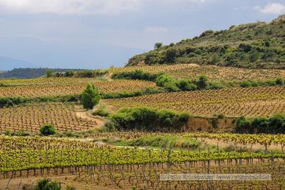Spanien, Baskenland, das Land um die Bodegas Baigorri herum
