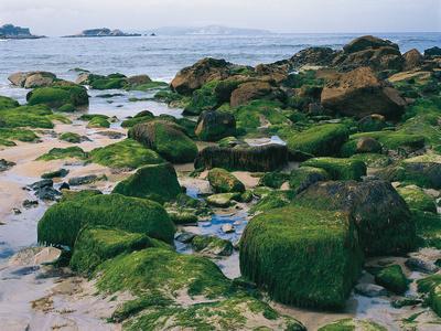 der Strand La Lanzada bei O Grove in Galicien © Spanisches Fremdenverkehrsamt