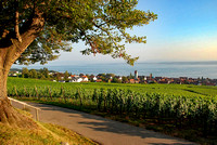 Bodensee_2009_622